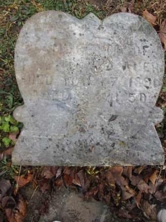 WILLAUER, SAMUEL - Union County, Ohio   SAMUEL WILLAUER - Ohio Gravestone Photos