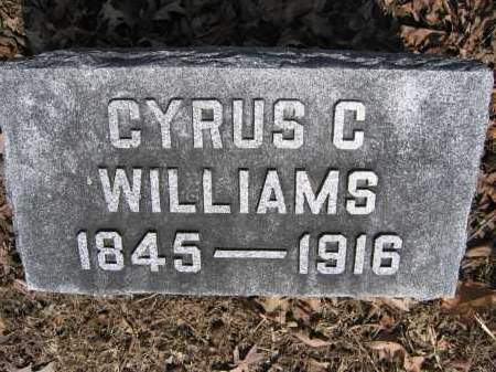 WILLIAMS, CYRUS C. - Union County, Ohio | CYRUS C. WILLIAMS - Ohio Gravestone Photos