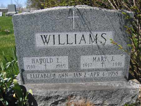 WILLIAMS, MARY J. - Union County, Ohio | MARY J. WILLIAMS - Ohio Gravestone Photos