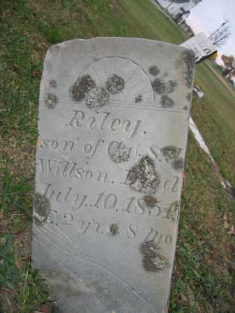 WILLSON, RILEY - Union County, Ohio | RILEY WILLSON - Ohio Gravestone Photos