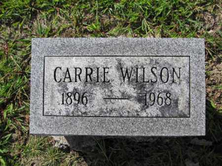 WILSON, CARRIE - Union County, Ohio | CARRIE WILSON - Ohio Gravestone Photos