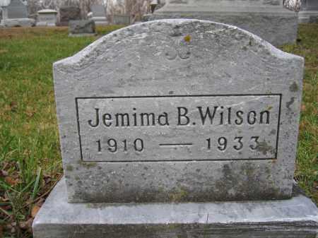WILSON, JEMIMA B. - Union County, Ohio | JEMIMA B. WILSON - Ohio Gravestone Photos