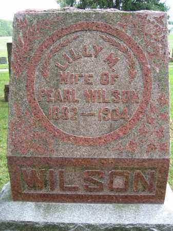 WILSON, LILLY M. - Union County, Ohio | LILLY M. WILSON - Ohio Gravestone Photos