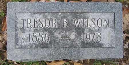 WILSON, TRESOR B. - Union County, Ohio | TRESOR B. WILSON - Ohio Gravestone Photos
