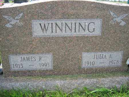 WINNING, JULIA A. - Union County, Ohio | JULIA A. WINNING - Ohio Gravestone Photos