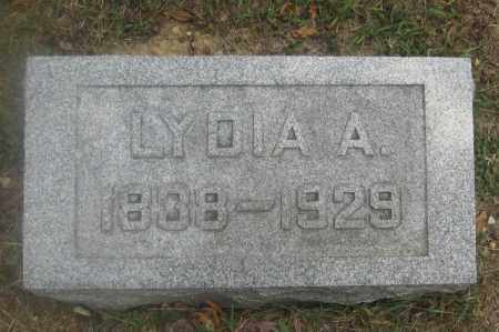 WISE, LYDIA A. - Union County, Ohio | LYDIA A. WISE - Ohio Gravestone Photos