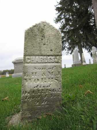 WORBS, CHARLES J. - Union County, Ohio | CHARLES J. WORBS - Ohio Gravestone Photos