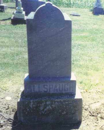 ALLSPAUGH, ELIZABETH - Van Wert County, Ohio | ELIZABETH ALLSPAUGH - Ohio Gravestone Photos