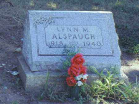 ALSPAUGH, LYNN MELVIN - Van Wert County, Ohio | LYNN MELVIN ALSPAUGH - Ohio Gravestone Photos