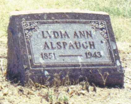 ALSPAUGH, LYDIA ANN - Van Wert County, Ohio | LYDIA ANN ALSPAUGH - Ohio Gravestone Photos