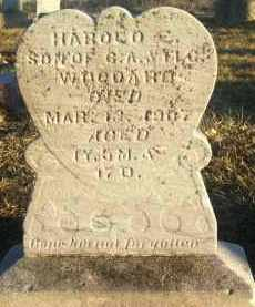 WOODARD, HAROLD - Van Wert County, Ohio | HAROLD WOODARD - Ohio Gravestone Photos