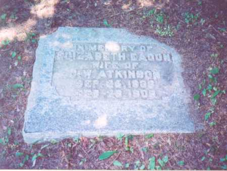 EAGON ATKINSON,, ELIZABETH - Vinton County, Ohio | ELIZABETH EAGON ATKINSON, - Ohio Gravestone Photos