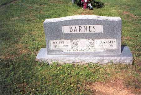 BARNES, WALTER H. - Vinton County, Ohio | WALTER H. BARNES - Ohio Gravestone Photos
