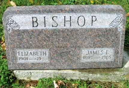 BISHOP, JAMES E. - Vinton County, Ohio | JAMES E. BISHOP - Ohio Gravestone Photos