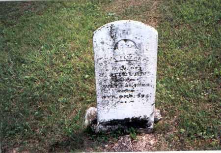 BURNS, DORA ELIZABETH - Vinton County, Ohio | DORA ELIZABETH BURNS - Ohio Gravestone Photos