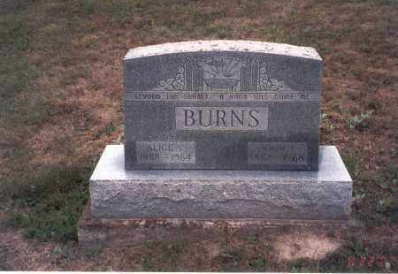 BURNS, ALICE - Vinton County, Ohio | ALICE BURNS - Ohio Gravestone Photos