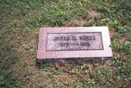 BURNS, JAMES W. - Vinton County, Ohio | JAMES W. BURNS - Ohio Gravestone Photos