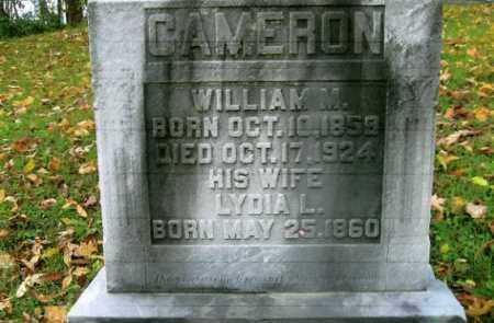 CAMERON, WILLIAM M. - Vinton County, Ohio | WILLIAM M. CAMERON - Ohio Gravestone Photos