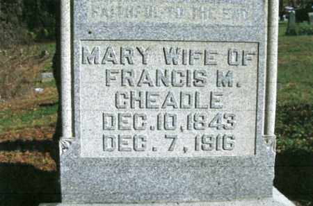 CHEADLE, MARY - Vinton County, Ohio | MARY CHEADLE - Ohio Gravestone Photos