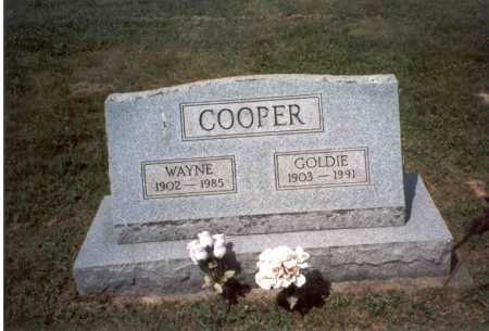 COOPER, WAYNE - Vinton County, Ohio | WAYNE COOPER - Ohio Gravestone Photos