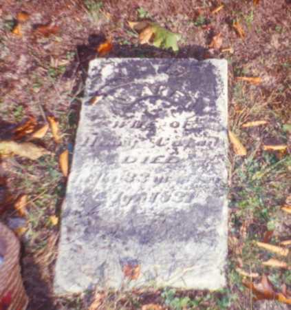 LAW COZAD, JANE - Vinton County, Ohio | JANE LAW COZAD - Ohio Gravestone Photos