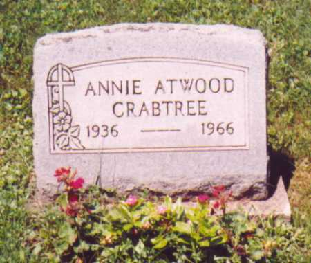 ATWOOD CRABTREE, ANNIE - Vinton County, Ohio | ANNIE ATWOOD CRABTREE - Ohio Gravestone Photos