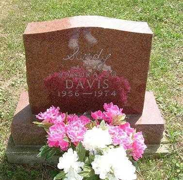 DAVIS, SANDRA JO - Vinton County, Ohio | SANDRA JO DAVIS - Ohio Gravestone Photos