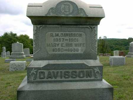 DAVISSON, MARY E. - Vinton County, Ohio | MARY E. DAVISSON - Ohio Gravestone Photos