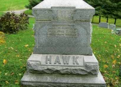 HAWK, DAVID W. - Vinton County, Ohio | DAVID W. HAWK - Ohio Gravestone Photos