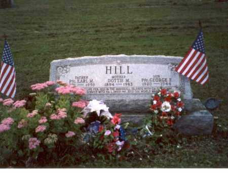 HILL, DOTTIE M. - Vinton County, Ohio | DOTTIE M. HILL - Ohio Gravestone Photos