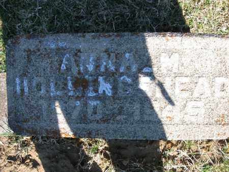 HOLLINGSHEAD, ANNA MARIE - Vinton County, Ohio | ANNA MARIE HOLLINGSHEAD - Ohio Gravestone Photos