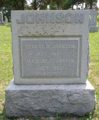 JOHNSON, GEORGE W. - Vinton County, Ohio | GEORGE W. JOHNSON - Ohio Gravestone Photos