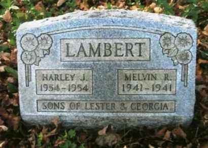 LAMBERT, HARLEY J. - Vinton County, Ohio | HARLEY J. LAMBERT - Ohio Gravestone Photos