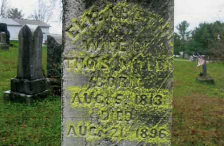 MILLER, ELIZABETH - Vinton County, Ohio | ELIZABETH MILLER - Ohio Gravestone Photos