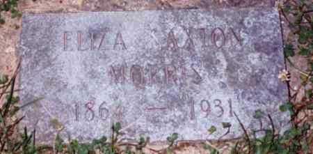 SAXTON MORRIS, ELIZA - Vinton County, Ohio | ELIZA SAXTON MORRIS - Ohio Gravestone Photos
