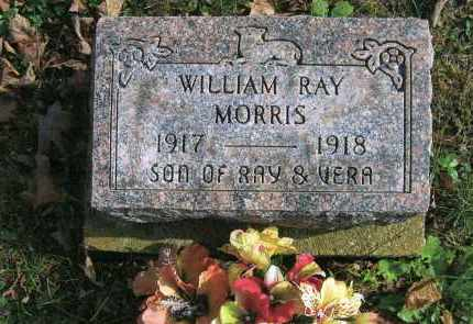 MORRIS, WILLIAM RAY - Vinton County, Ohio | WILLIAM RAY MORRIS - Ohio Gravestone Photos