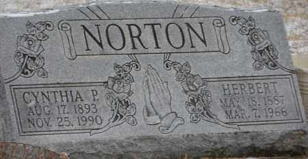 PIERCE NORTON, CYNTHIA - Vinton County, Ohio | CYNTHIA PIERCE NORTON - Ohio Gravestone Photos