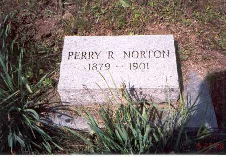 NORTON, PERRY R. - Vinton County, Ohio | PERRY R. NORTON - Ohio Gravestone Photos