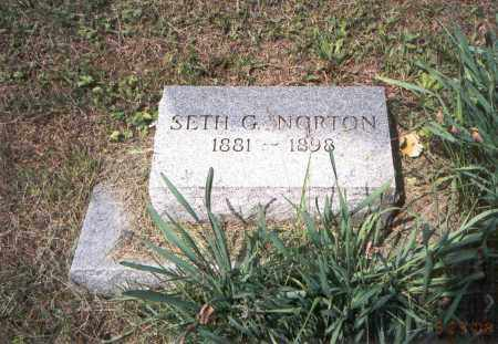 NORTON, SETH G. - Vinton County, Ohio | SETH G. NORTON - Ohio Gravestone Photos