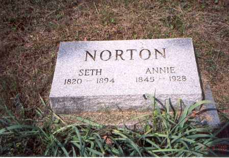 NORTON, SETH J. - Vinton County, Ohio | SETH J. NORTON - Ohio Gravestone Photos