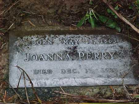 BENNINGTON PERRY, JOANNA - Vinton County, Ohio | JOANNA BENNINGTON PERRY - Ohio Gravestone Photos