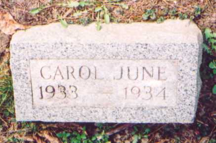 REMY, CAROL JUNE - Vinton County, Ohio | CAROL JUNE REMY - Ohio Gravestone Photos
