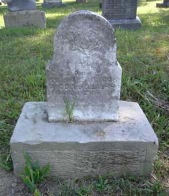 RIGGS, BIRTHA - Vinton County, Ohio | BIRTHA RIGGS - Ohio Gravestone Photos