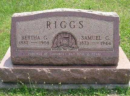 RIGGS, BERTHA G. - Vinton County, Ohio | BERTHA G. RIGGS - Ohio Gravestone Photos
