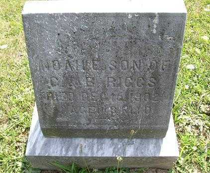 RIGGS, NOAH EVAN - Vinton County, Ohio | NOAH EVAN RIGGS - Ohio Gravestone Photos