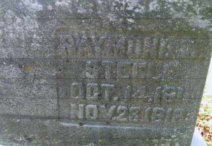 STEELE, RAYMOND W. - Vinton County, Ohio | RAYMOND W. STEELE - Ohio Gravestone Photos