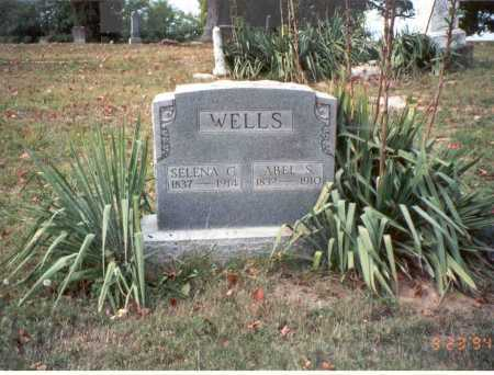 WELLS, ABEL S. - Vinton County, Ohio | ABEL S. WELLS - Ohio Gravestone Photos