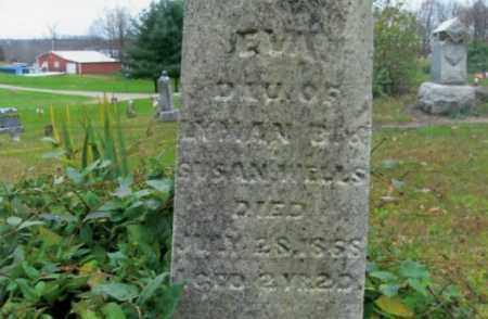 WELLS, EVA - Vinton County, Ohio | EVA WELLS - Ohio Gravestone Photos