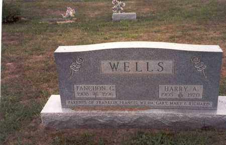 WELLS, FANCHON G. - Vinton County, Ohio | FANCHON G. WELLS - Ohio Gravestone Photos