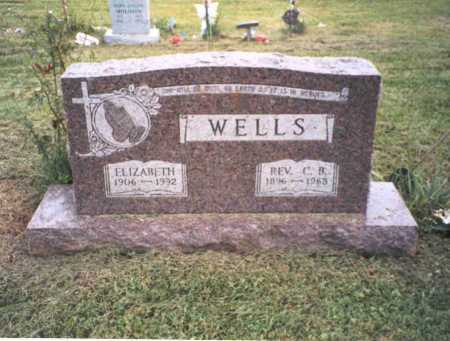 WELLS, REV. CONSTANTINE B. - Vinton County, Ohio | REV. CONSTANTINE B. WELLS - Ohio Gravestone Photos